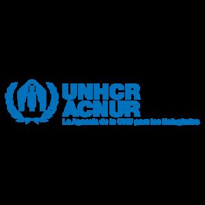 Brinda protección y asistencia a personas refugiadas en todo el mundo.